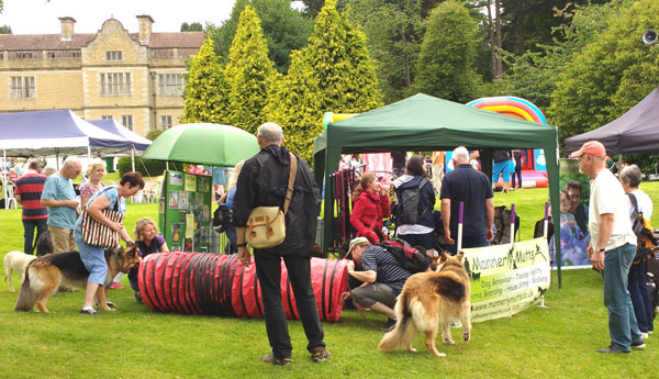 Ludlow Dog Day August Th